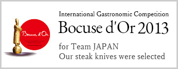 International Gastronomic Competition Bocuse d'Or 2013